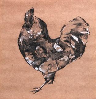 Coq, fusain et craie blanche sur Kraft, 29x29 cm, 2013